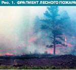 Рис. 1. Фрагмент лесного пожара