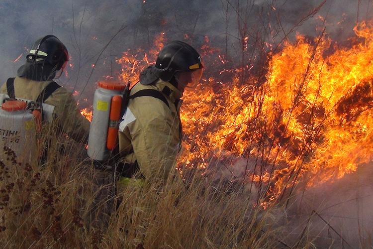Тактика тушения лесных пожаров