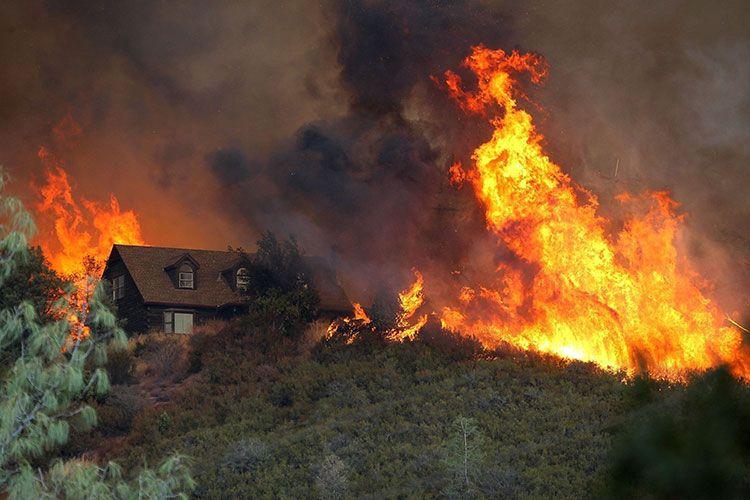 Лесной пожар возле деревни